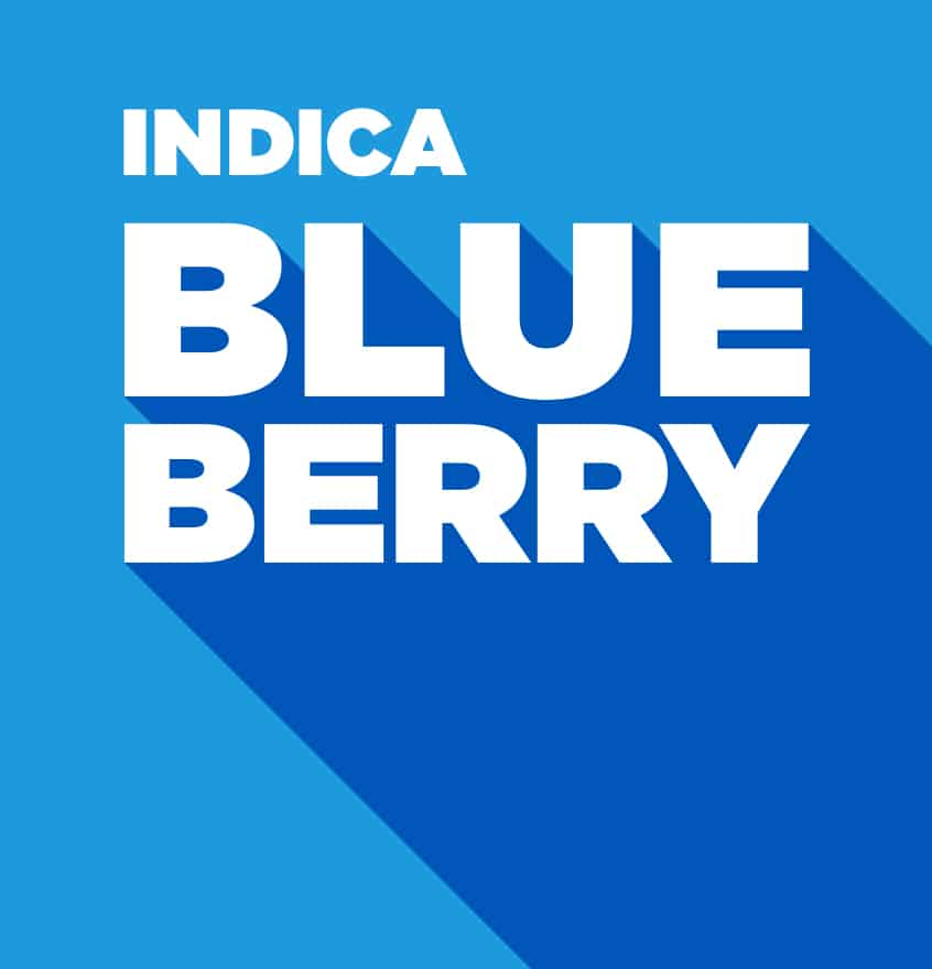 Indica – Blueberry